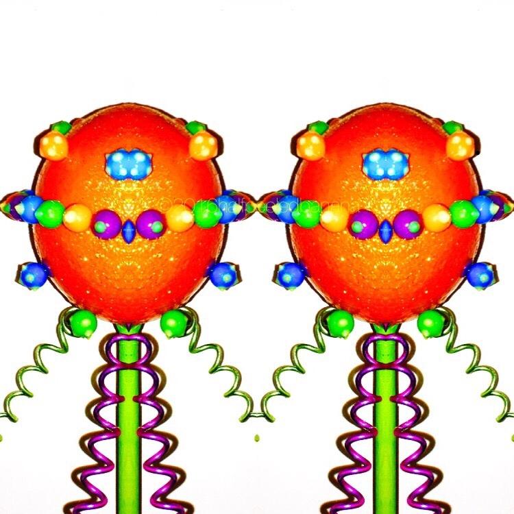 space twins! garden art flowers reflected