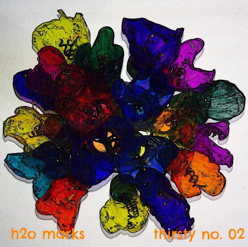 h2o marks