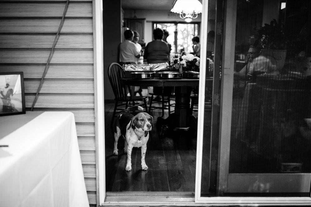 ludington-michigan-intimate-backyard-wedding-jessica-nolan201.jpg