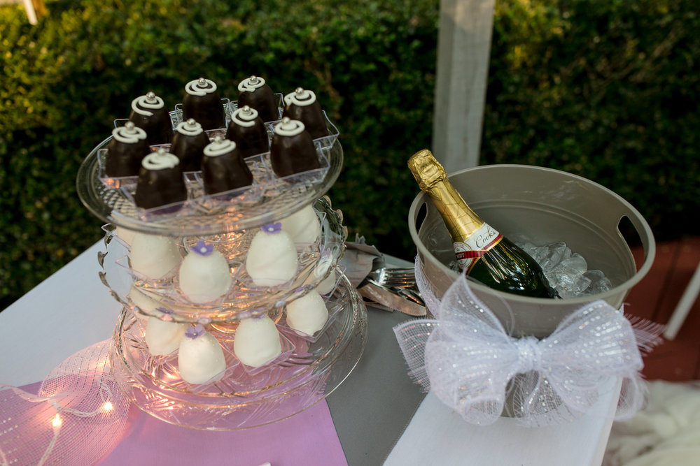 ludington-michigan-intimate-backyard-wedding-jessica-nolan343.jpg