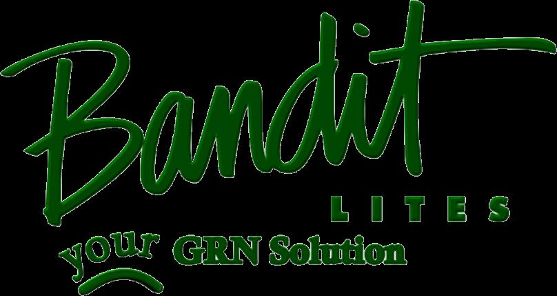 Bandit Logo.png