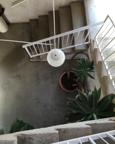 A staircase between the cafe and gallery / photo by Maleeha Sambur