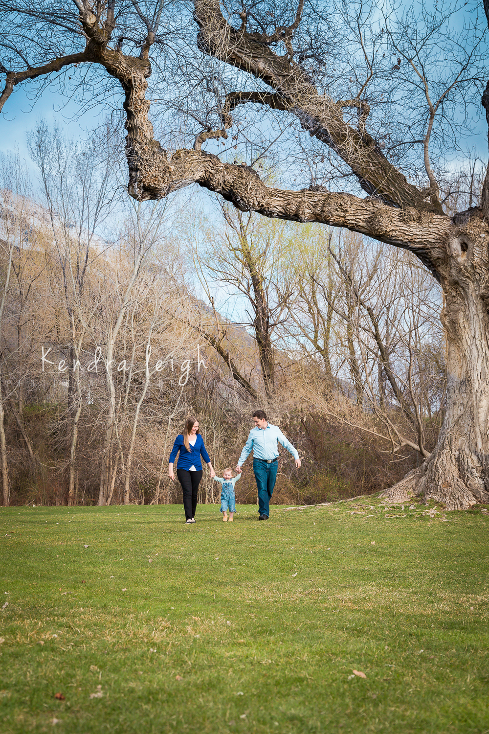 Family Walking Under a Tree