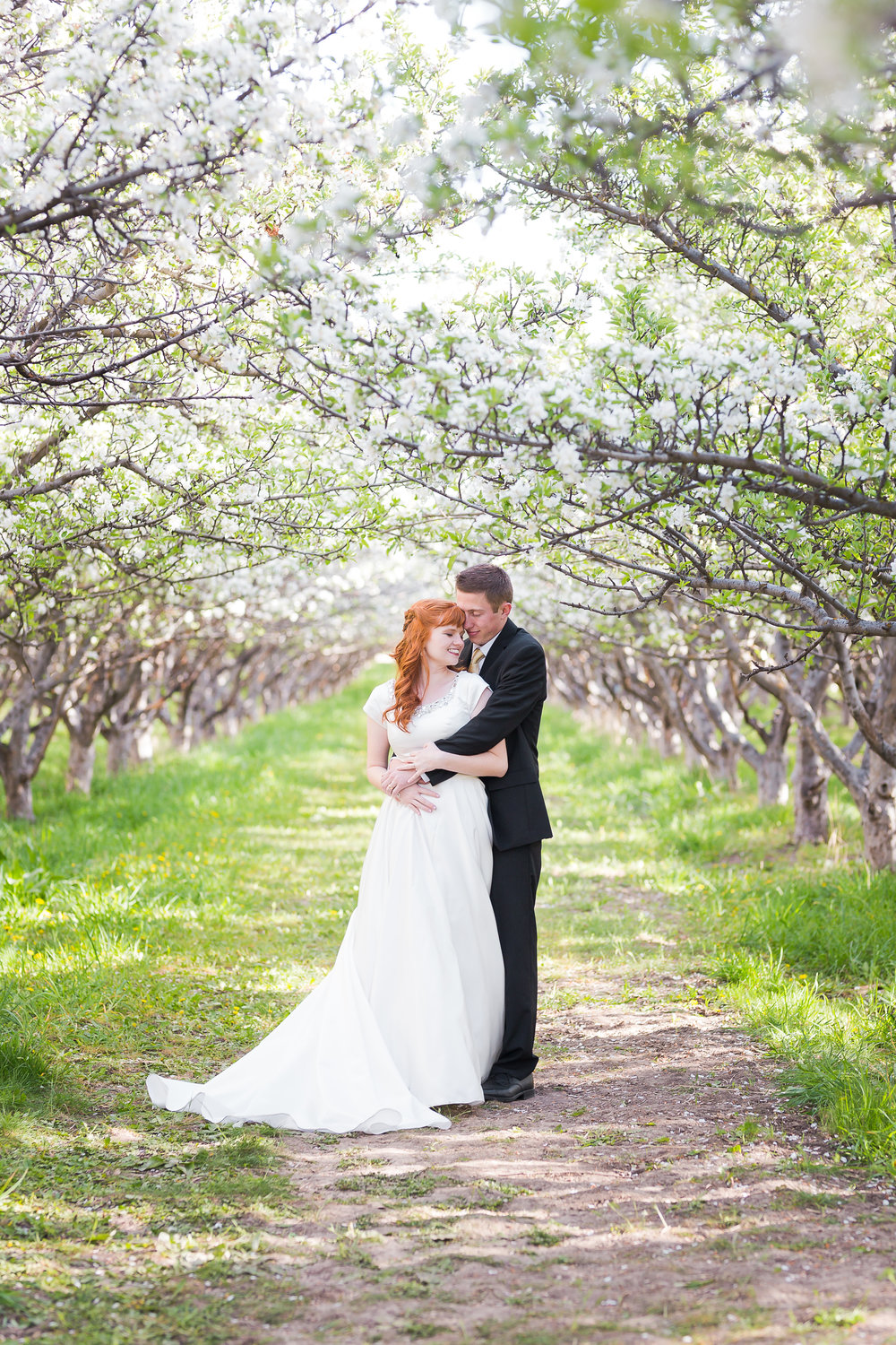 Bride and Groom Snuggle under Blossoms