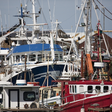 Fishing_Fleet_-_Howth.jpg
