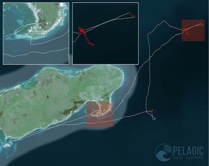 PDS Vessel Tracking System