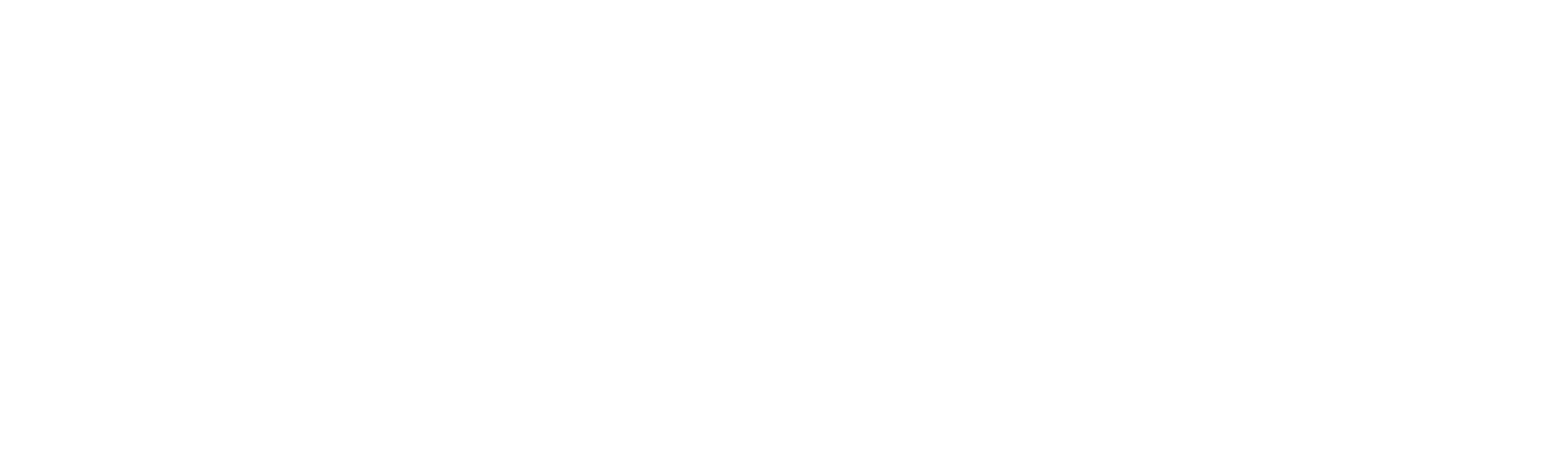 George's Surf School