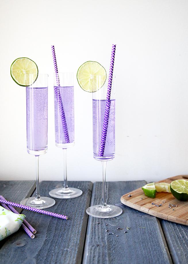 Lavender-Blueberry-Spritzer7