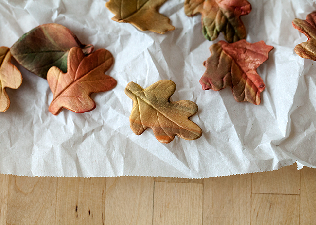 Fall-Leaves-Drying2