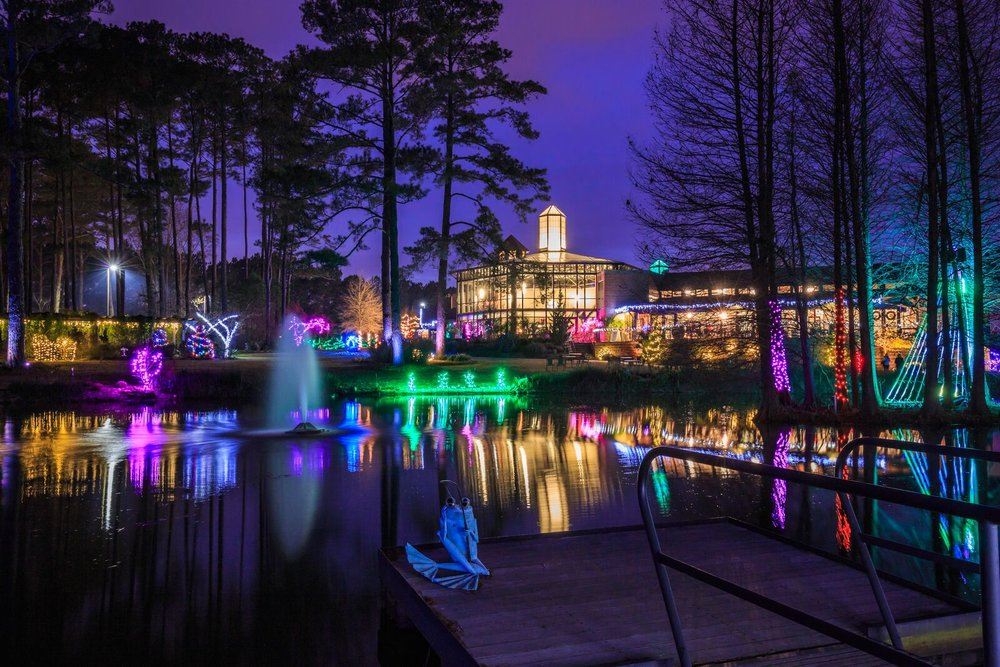 Christmas Lights At Cape Fear Botanical Gardens