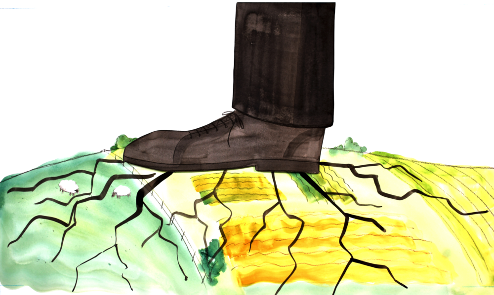 corporate shoe PNG.png