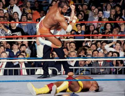 Yes I'm quite aware that Hogan beats Savage on this night