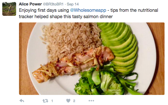 Gettips wholesome it also allows you to create your own recipes to maximize your nutrition for example alice used wholesome to construct this nutrient packed dinner forumfinder Image collections