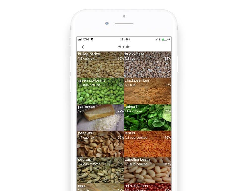Vegetarian Protein rich foods app