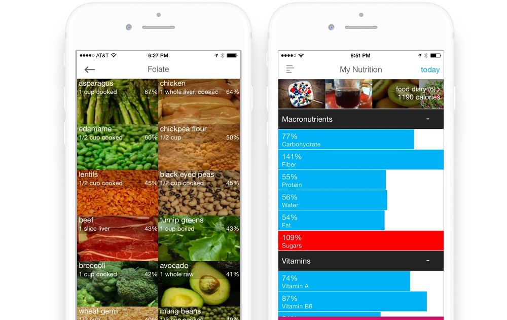 Folate in foods and nutrition tracker great for pregnancy iOS app
