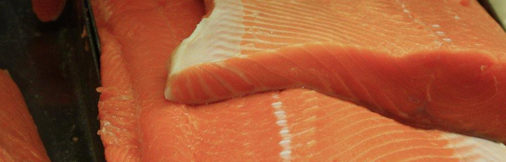 Salmon nutrition app
