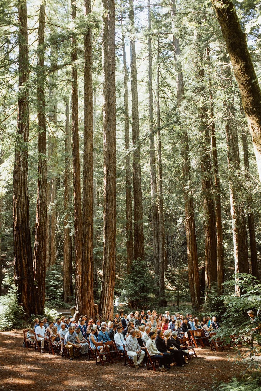 Copperhead Photography - Kaitlyn&Wes - California Redwood Wedding_web 8.jpg