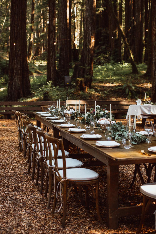 Copperhead Photography - Kaitlyn&Wes - California Redwood Wedding_web 10.jpg