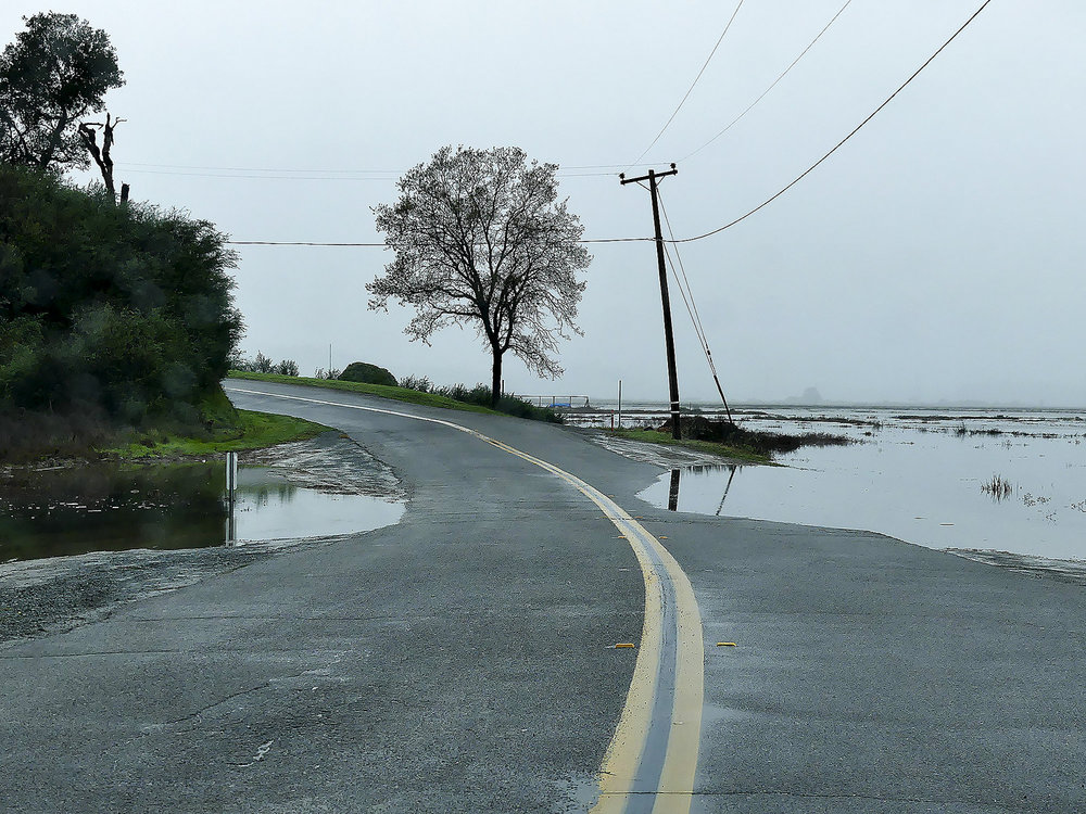 Valentine Corp Sea Level Rise Experts - Bay Area - King Tides.jpg
