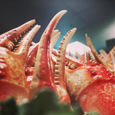 crabs square.jpg