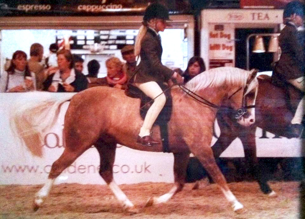 Rae age 11 riding her pony Dipsy at Horse of the year show in 2004.