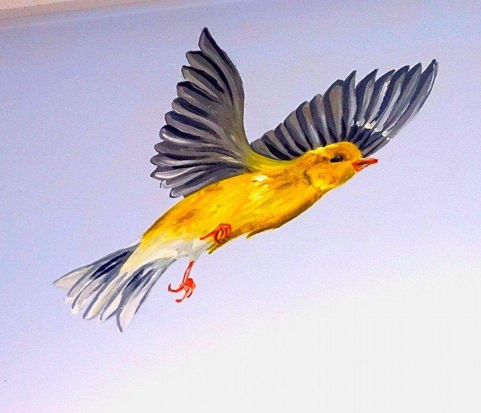 GRAY AND YELLOW V2 BIRD ON WALL.jpg