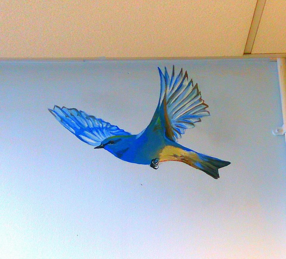 BLUE BIRD ON WALL.jpg