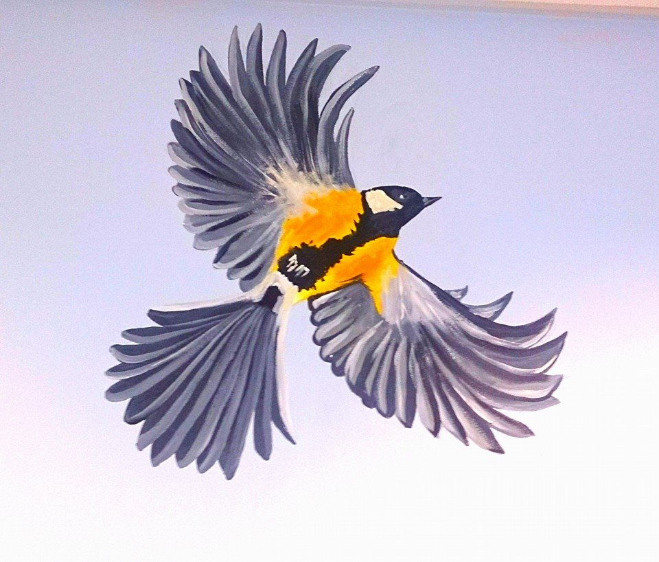 GRAY AND YELLOW BIRD ON WALL.jpg