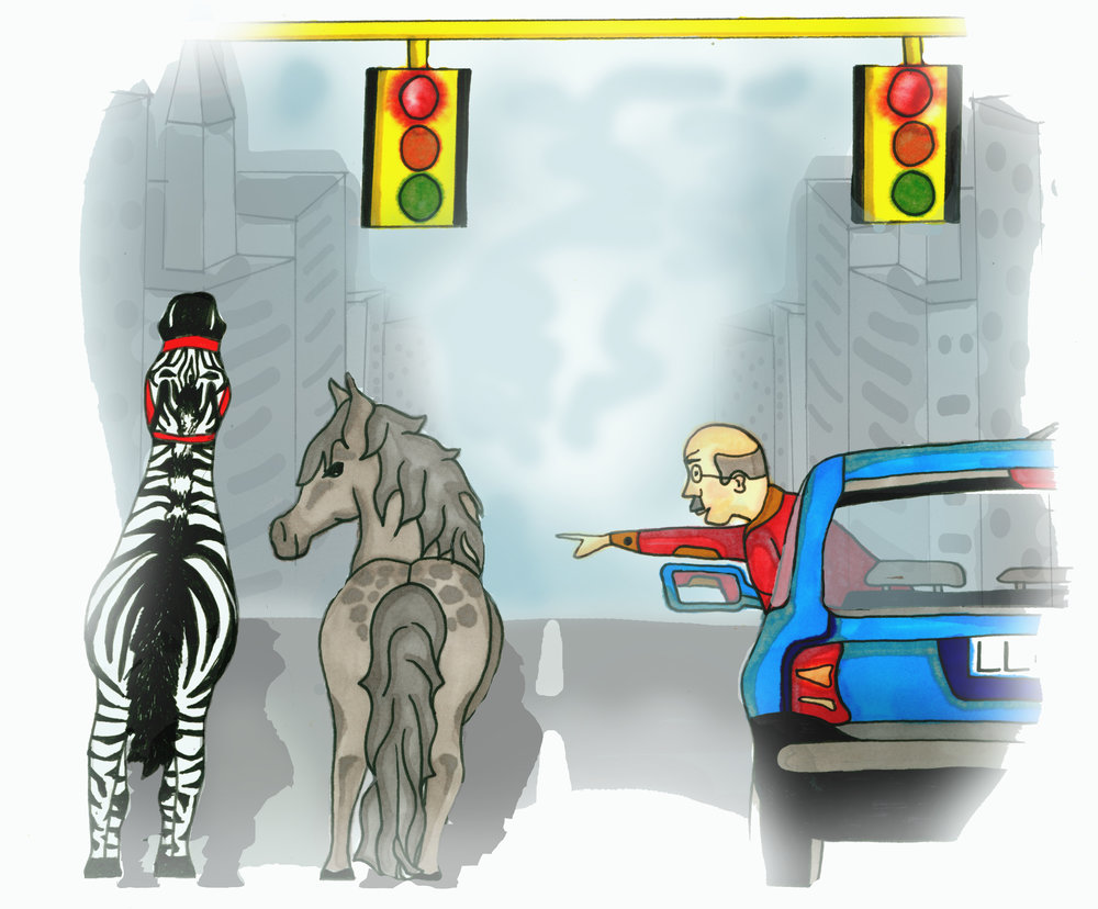 new york zebraFlat .jpg