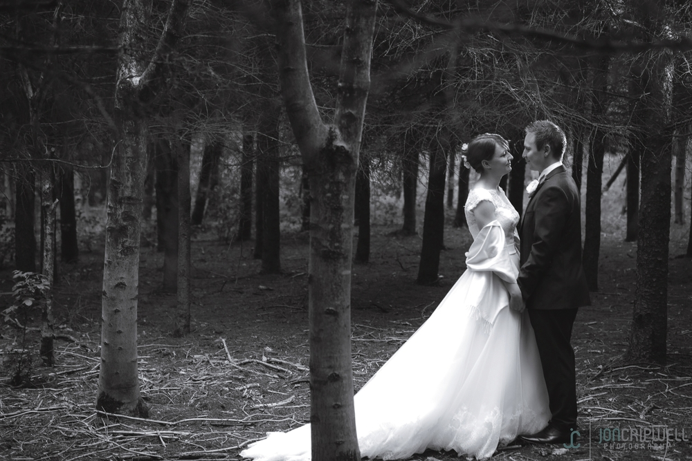 Rosliston Forestry Centre Wedding photography black and white