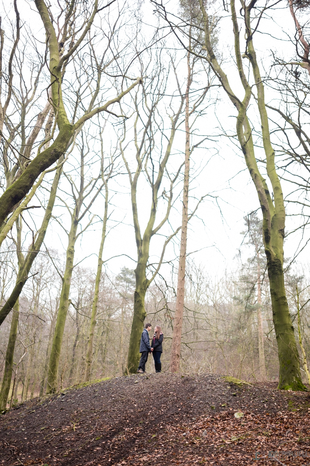 Engagement photos in woods in Derbyshire