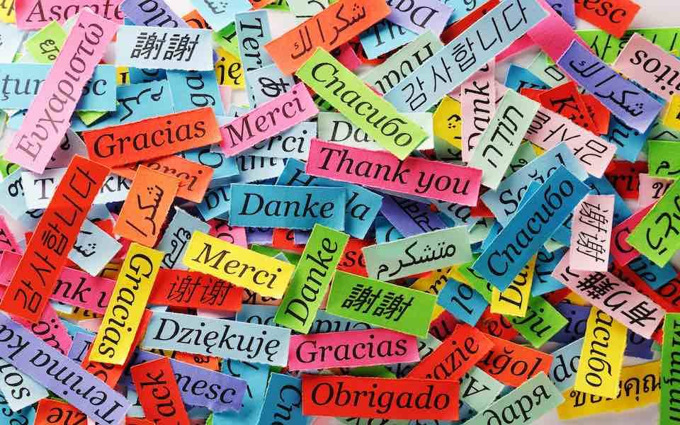 lingue.jpg