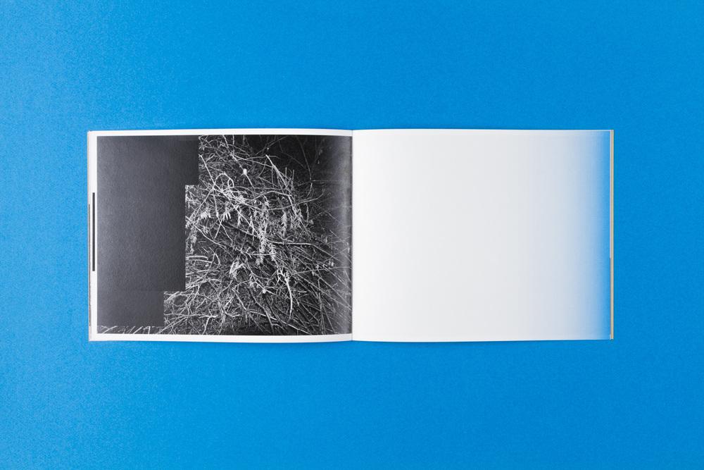 fragmented-sights-3-3-of-11_1500.jpg
