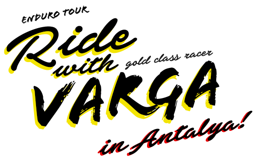 varga-poster-v2c.png