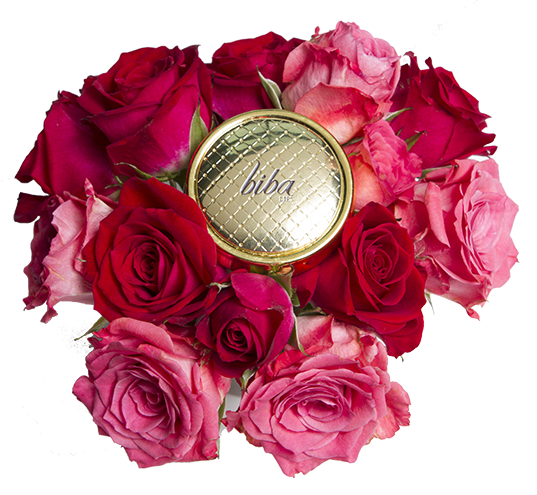Biba-Lips-roses.png
