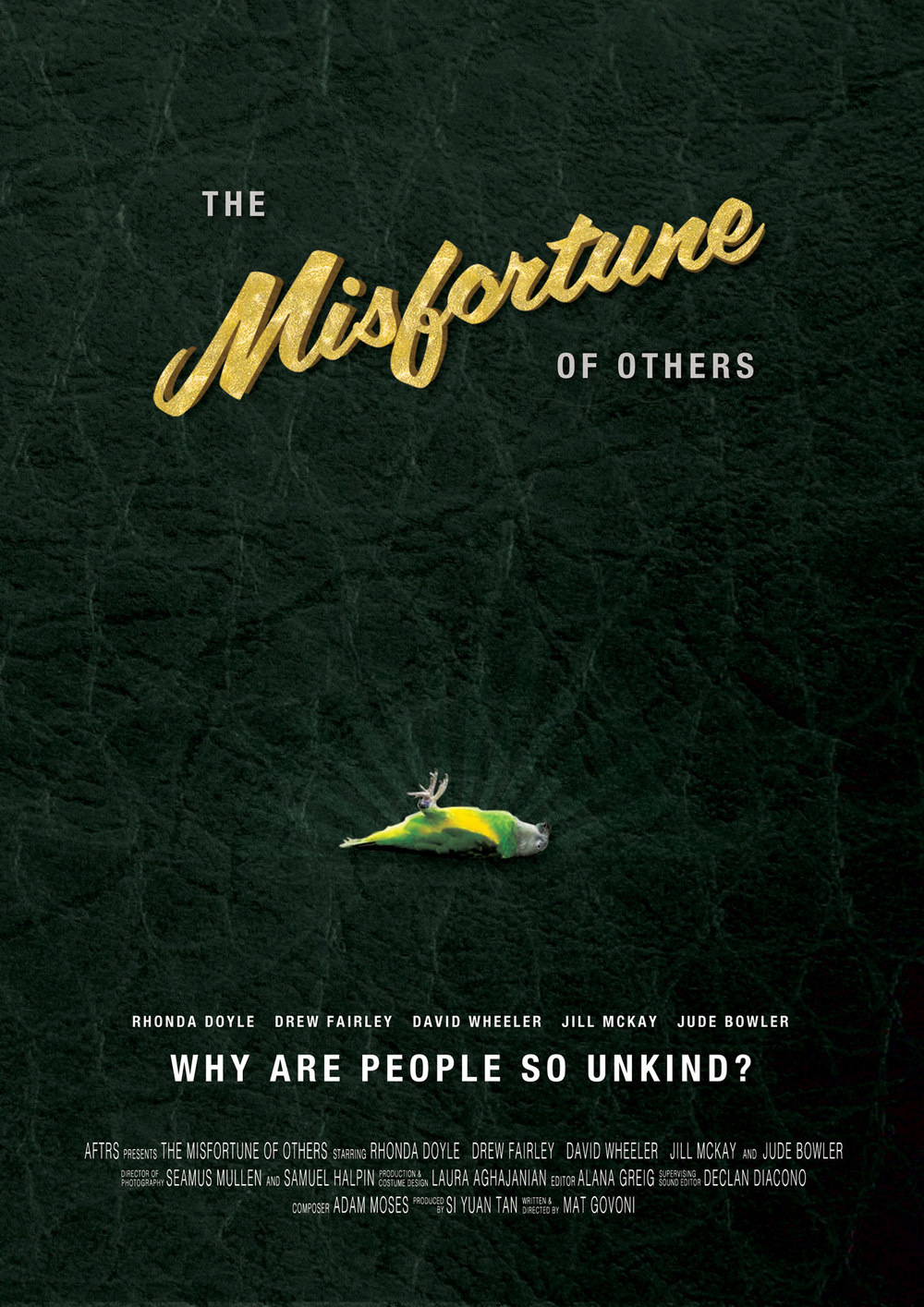 The_Misfortune_Of_Others_Poster.jpg
