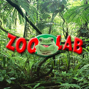 zoolabs-image-template.jpg