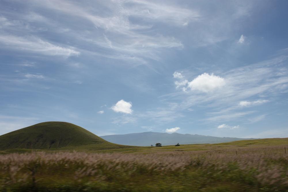 hawaii-2011-411.jpg