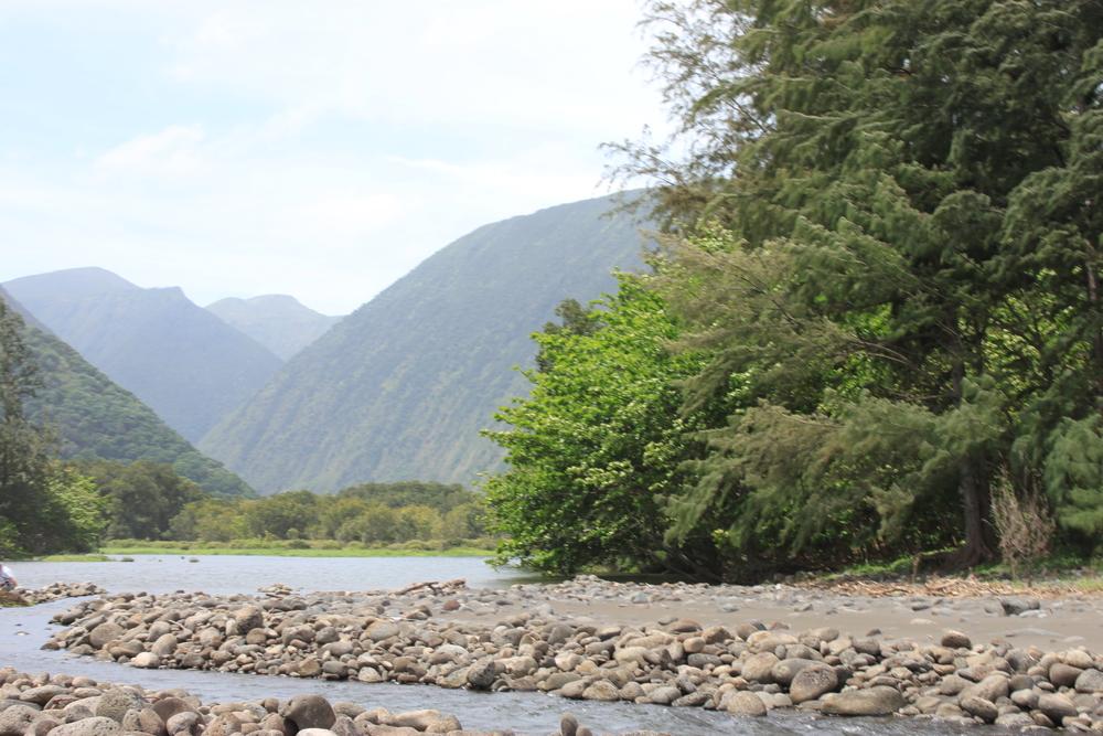 hawaii-2011-431.jpg
