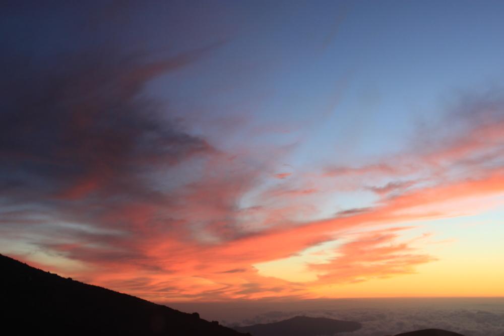 hawaii-2011-488.jpg
