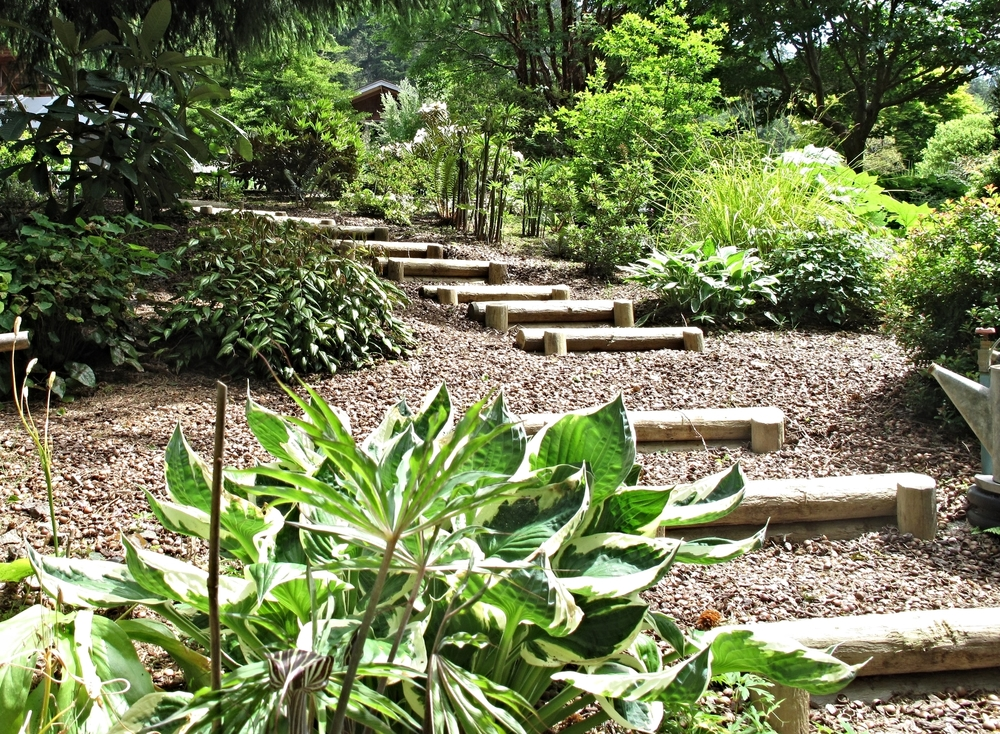 Bamboo Steps  - These maintain a gentle presence in the garden.  Simple, durable and easy to navigate.