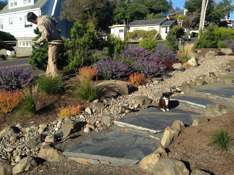 - Coyote Gardens - Landscape Design, Build, And Care For The Oregon Coast
