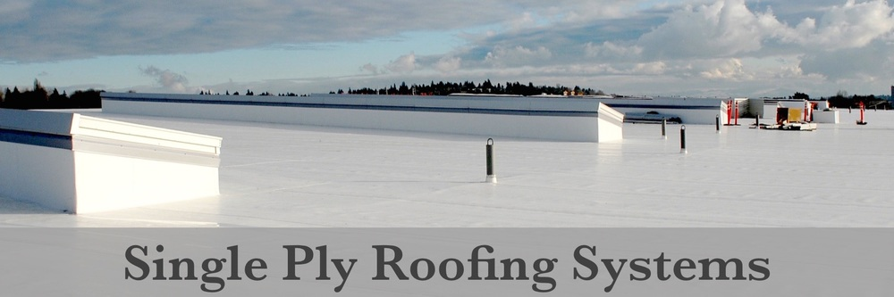 Single Ply Roof Systems