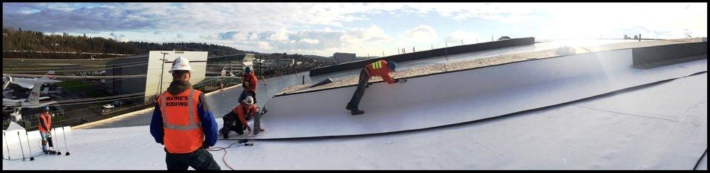 Wayneu0027s Roofing