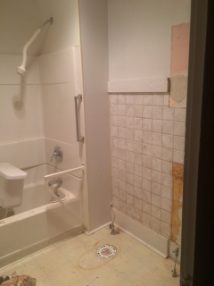 Main bath before