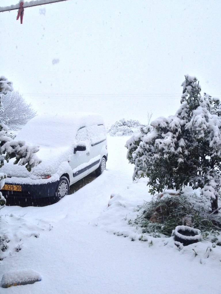 Accumulating snow near Jerusalem on January 10, 2013.  Photo courtesy of Elie Ben-Meir.