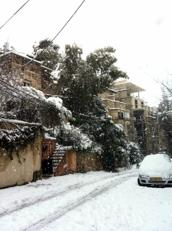 Snow along a road near Jerusalem.  Photo courtesy of Elie Ben-Meir.