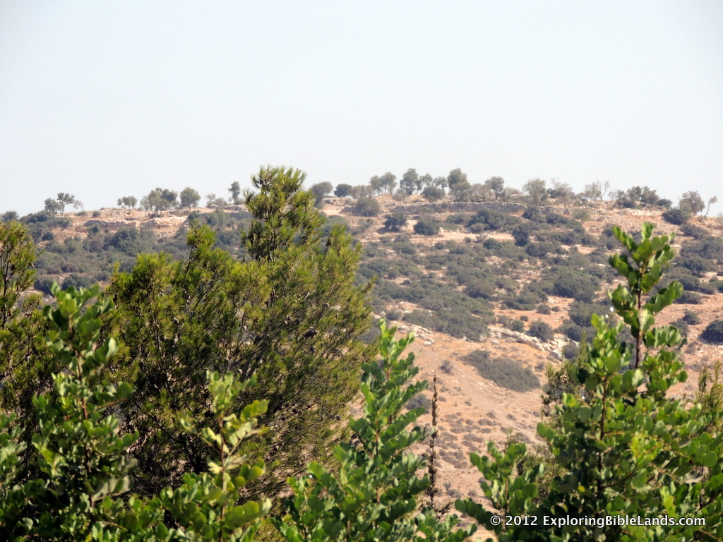 High on the hill, Khirbet Qeiyafa overlooks with Elah Valley.
