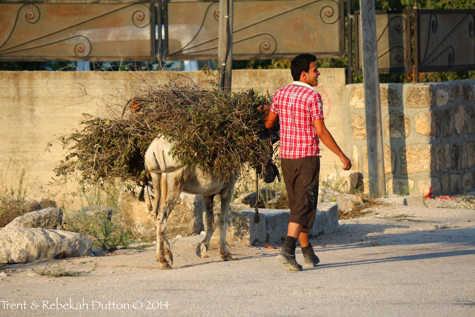 05_Man_w_Donkey_Samaria