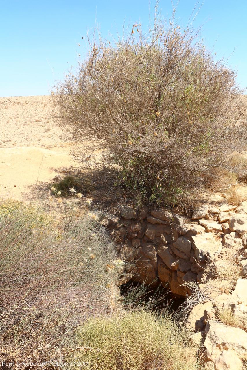 4_Negev_DesertCistern